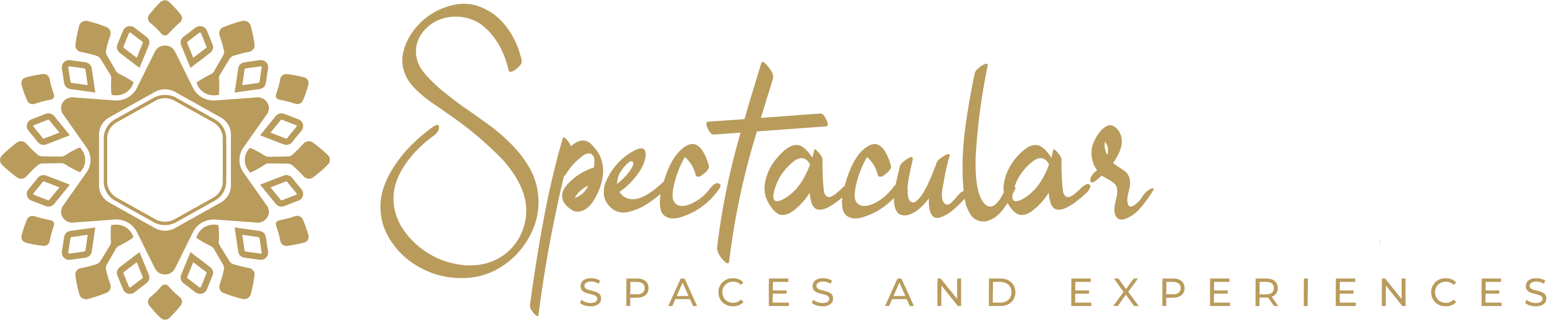 Spectacular Spaces and Experiences